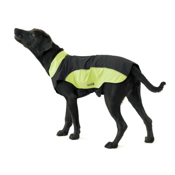 nahrungsergänzung gelenke hund