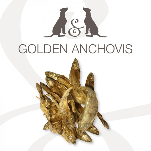 Cheny & Friends Golden Anchovis 100g